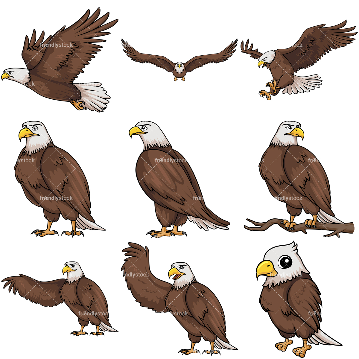 Bald Eagle Collection.