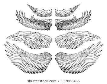 Clipart eagle wings outline 3 » Clipart Portal.