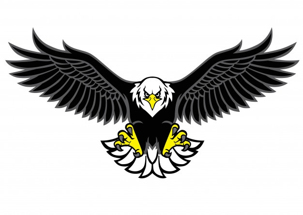 Eagle Wings Vectors, Photos and PSD files.