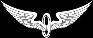 Eagle Wings Outline PNG, SVG Clip art for Web.