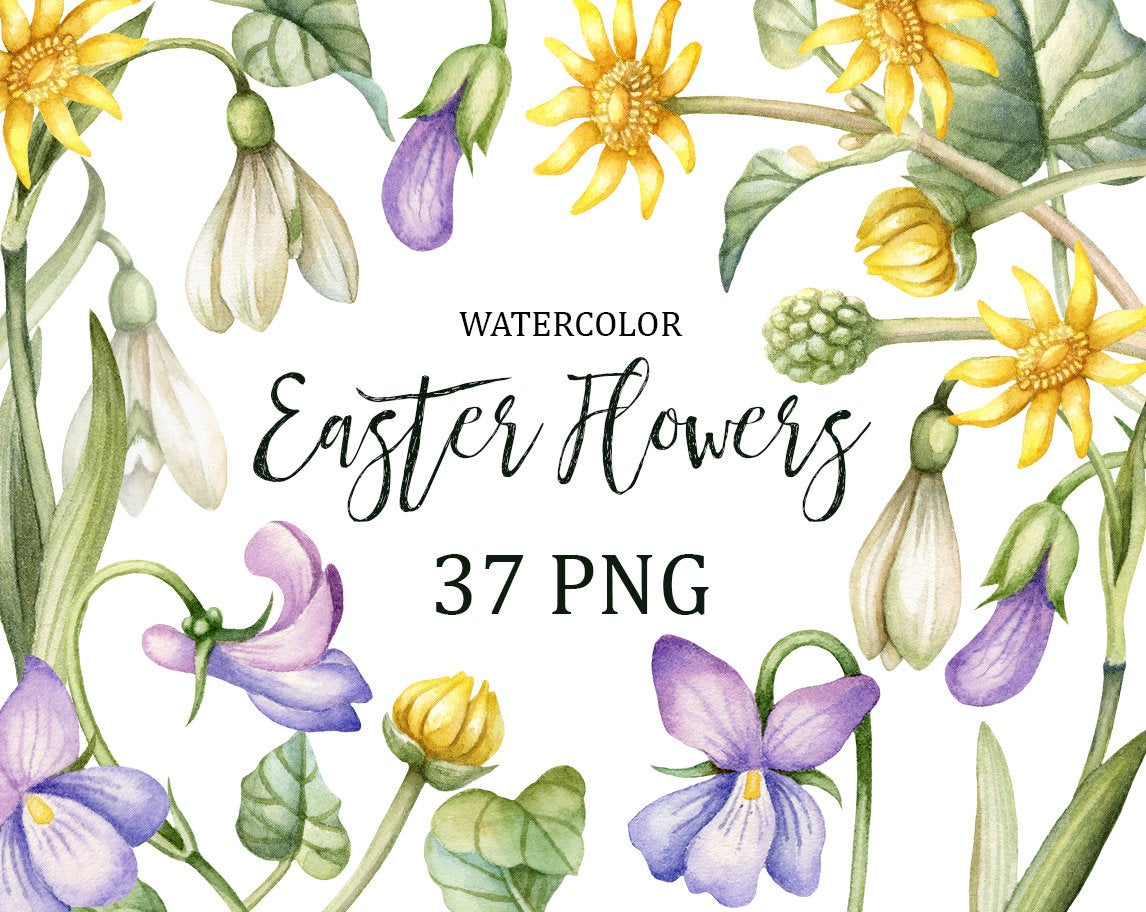 Easter Flowers Clipart, Spring Watercolor Flower Clip Art, Viola,  Snowdrops, Hand Painted High quality Spring Flowers. Commercial use..