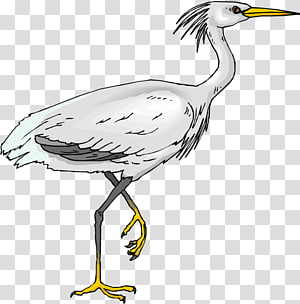 White crane, Bird Crane, Egret Bird transparent background PNG.