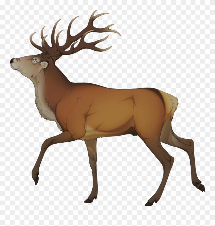Elk Clipart Golden Deer.