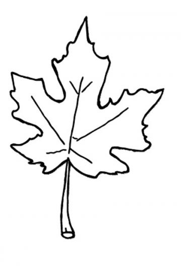 Best Fall Leaves Clip Art Black And White #21694.