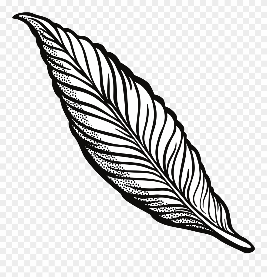 Clipart Feather Lineart 45 Anniversary Clip Art Free.