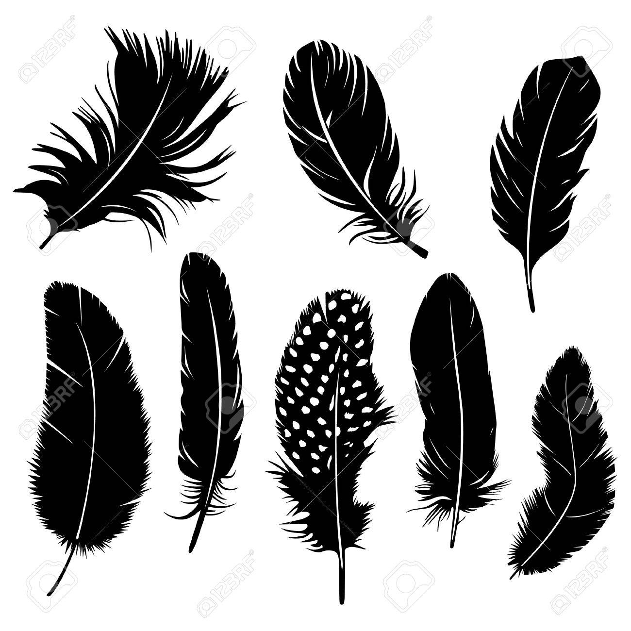 Set of feather clipart.