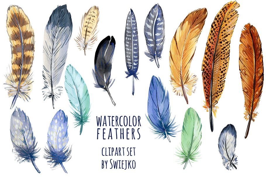 Watercolor feather clipart.