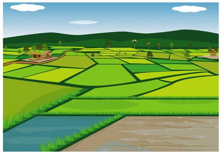 3,226 Rice Field Cliparts, Stock Vector And Royalty Free Rice Field.