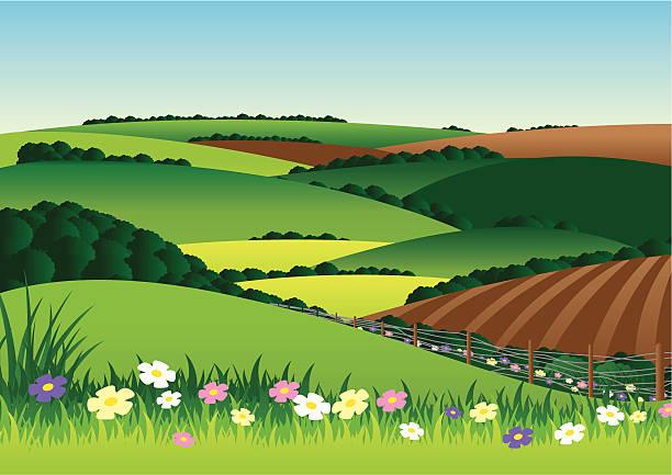 Best Plowed Field Illustrations, Royalty.