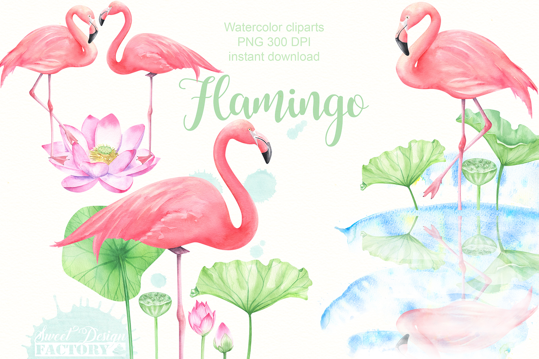 Watercolor flamingo clipart.