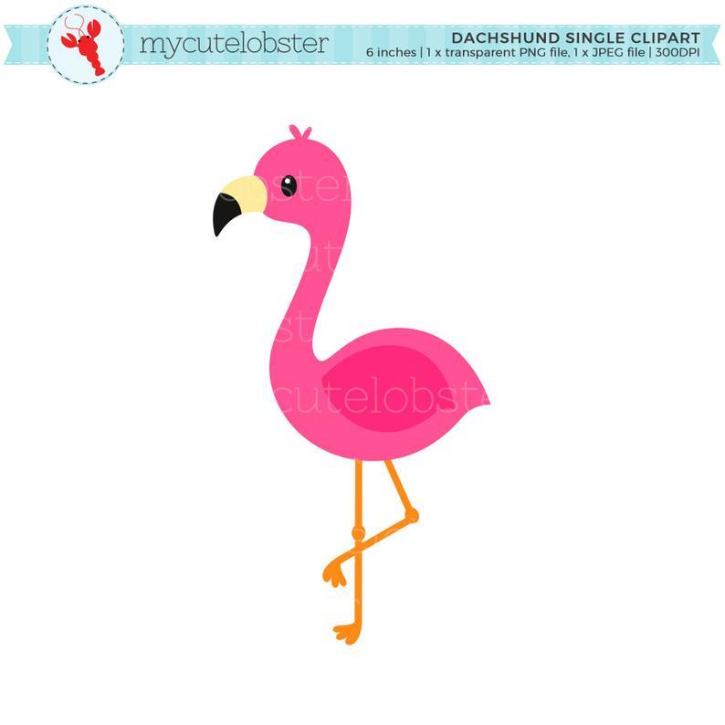 Flamingo Single Clipart.