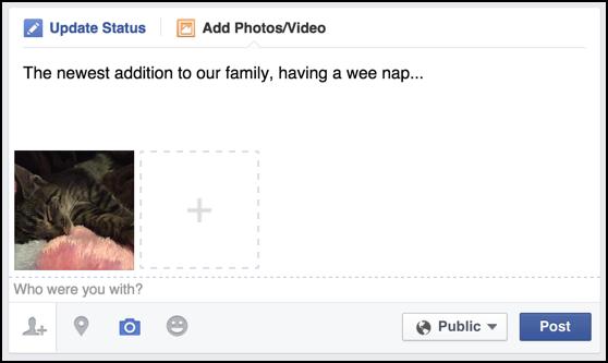 How do you add photos to a Facebook status post?.