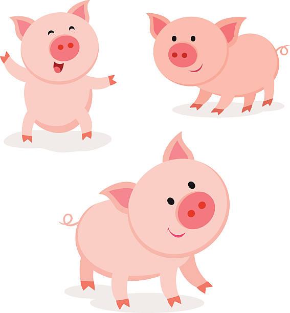 Best Pig Illustrations, Royalty.