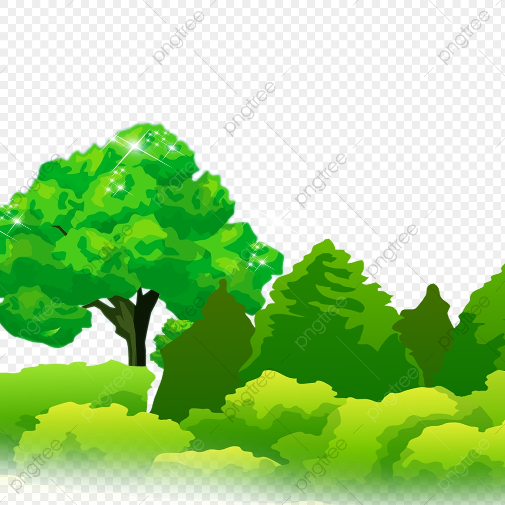 Forest, Trees, Forest Clipart PNG Transparent Clipart Image and PSD.