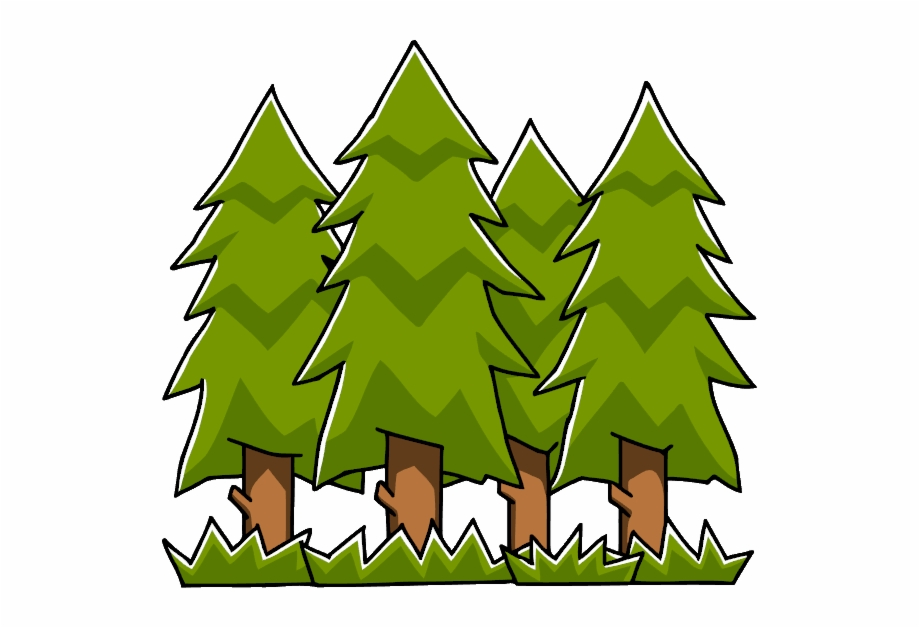 Forest Clipart Evergreen Tree.