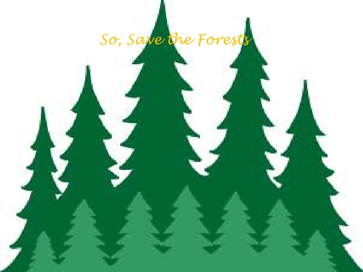 Clipart forest trees 1 » Clipart Station.