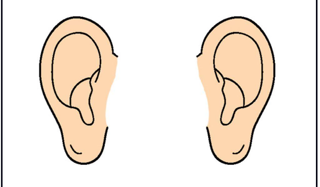 28+ Ear Clipart.