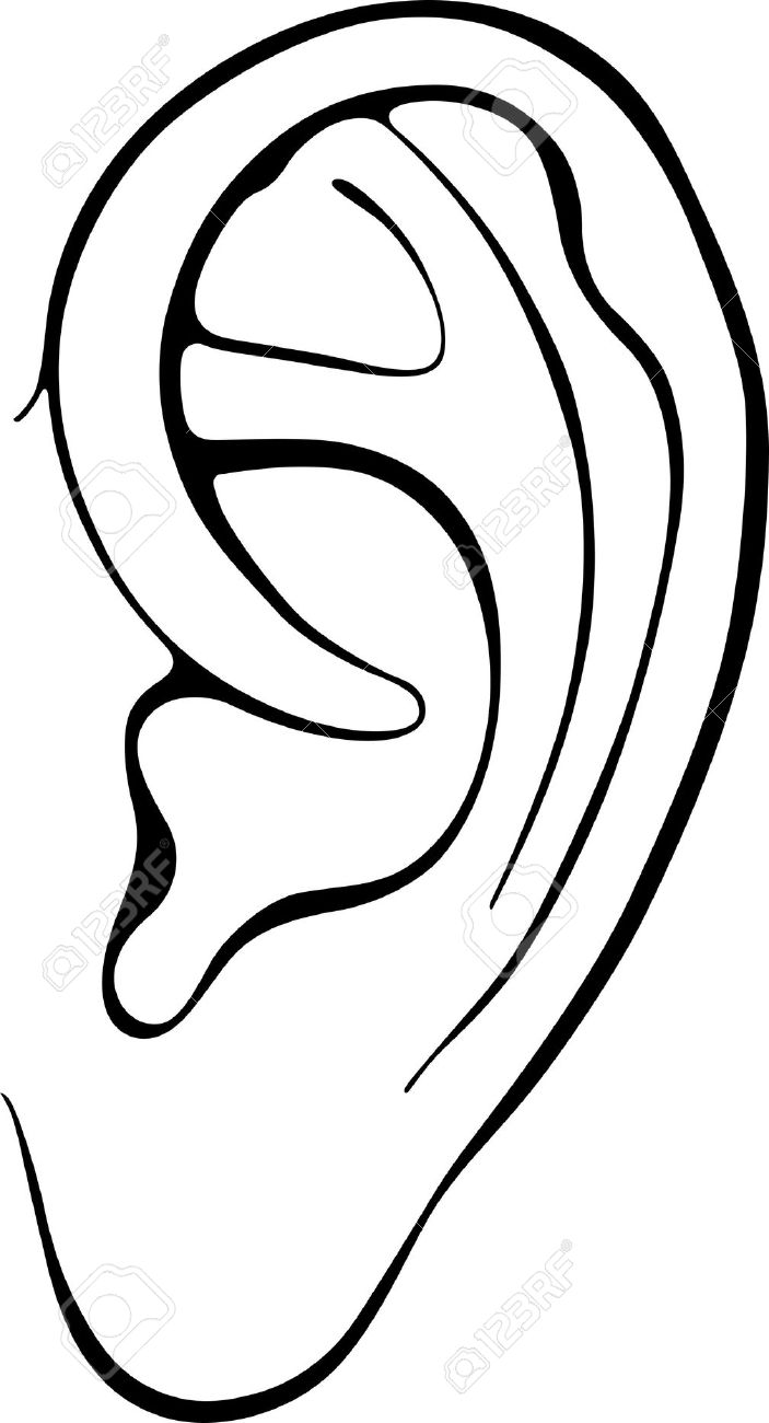 Ear clip art free clipart images 4.