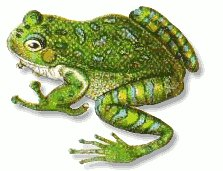 Free Frogs Clipart.