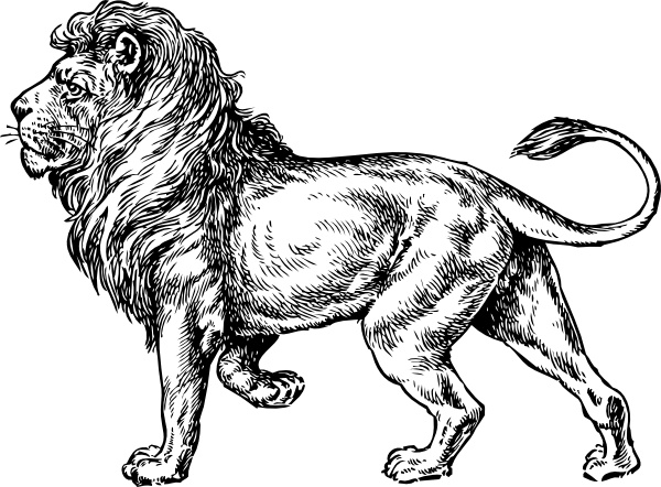 Lion clip art Free vector in Open office drawing svg ( .svg ) vector.