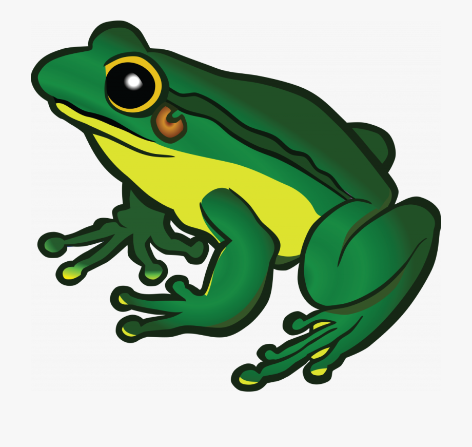 Clipart Frog #1278983.