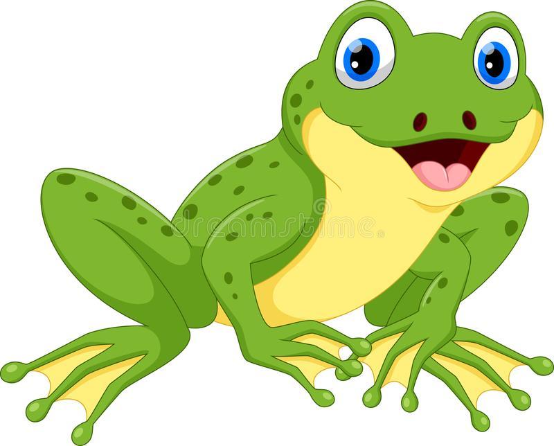Frog Stock Illustrations.
