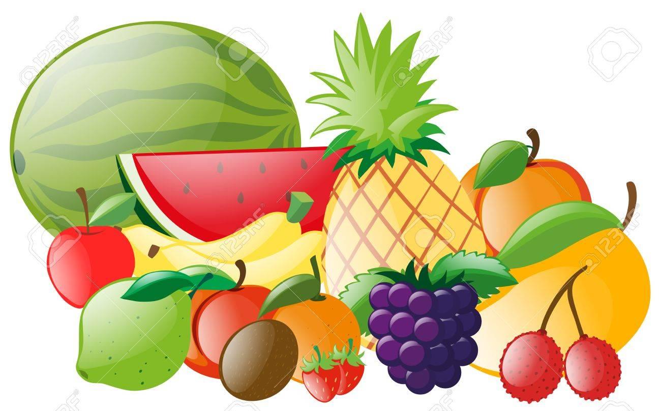 Diferentes tipos de ilustración de frutas tropicales.