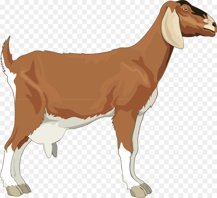 Goat Cartoon png download.