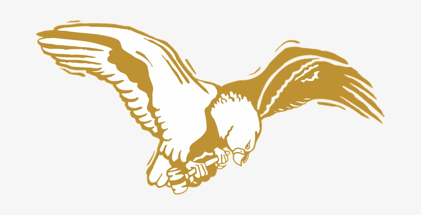 Eagle, Bird, Gold, Wings, Feathers.