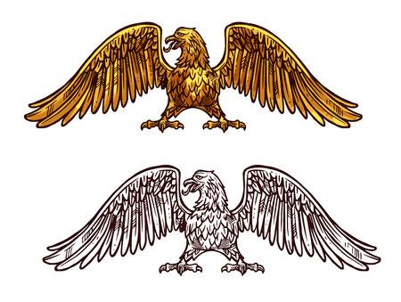 1,496 Golden Eagle Stock Vector Illustration And Royalty Free Golden.