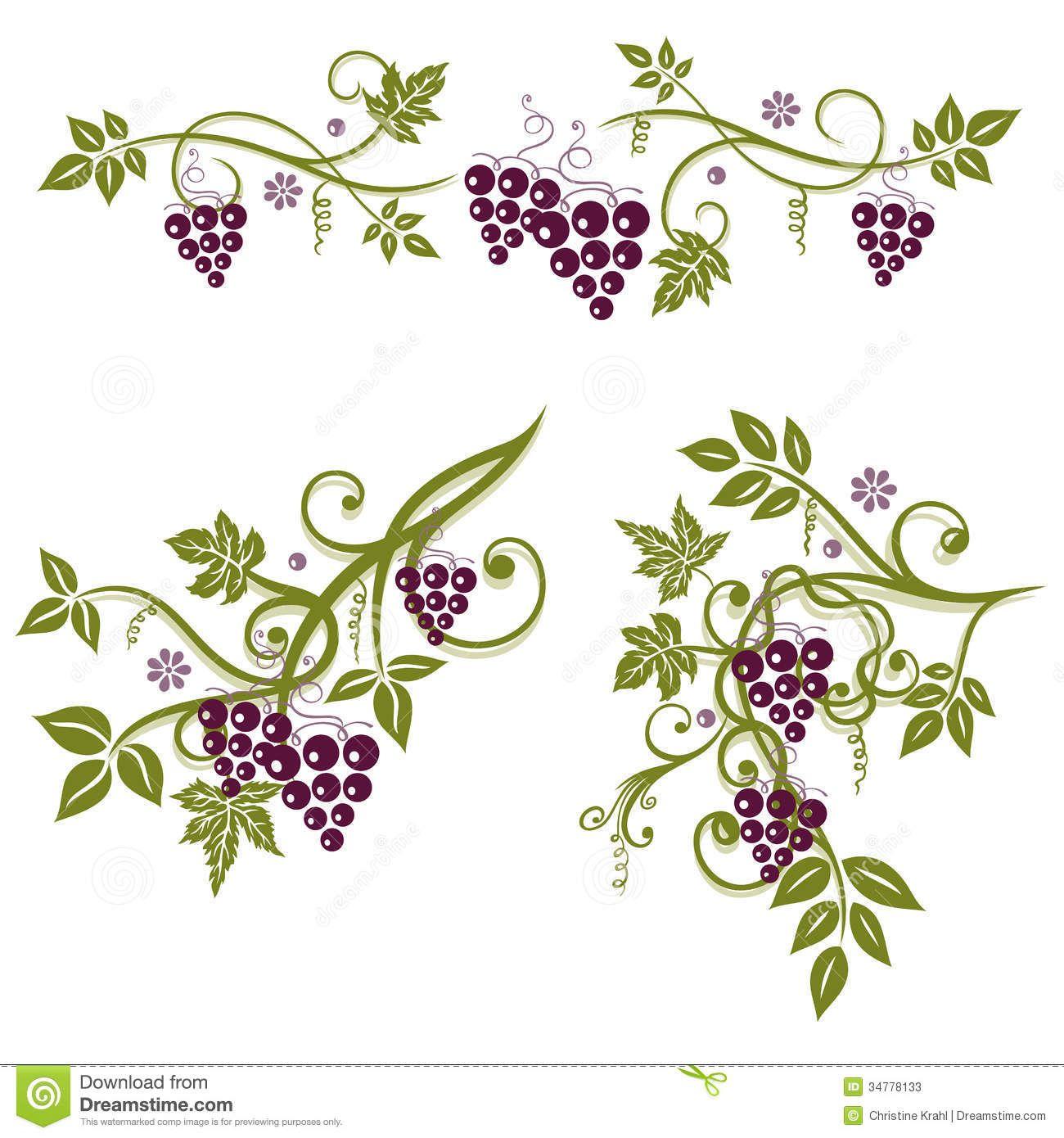 grape vine leaves.