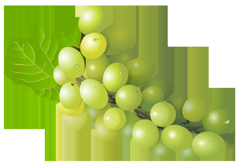 Grape PNG Free Clip Art Image.