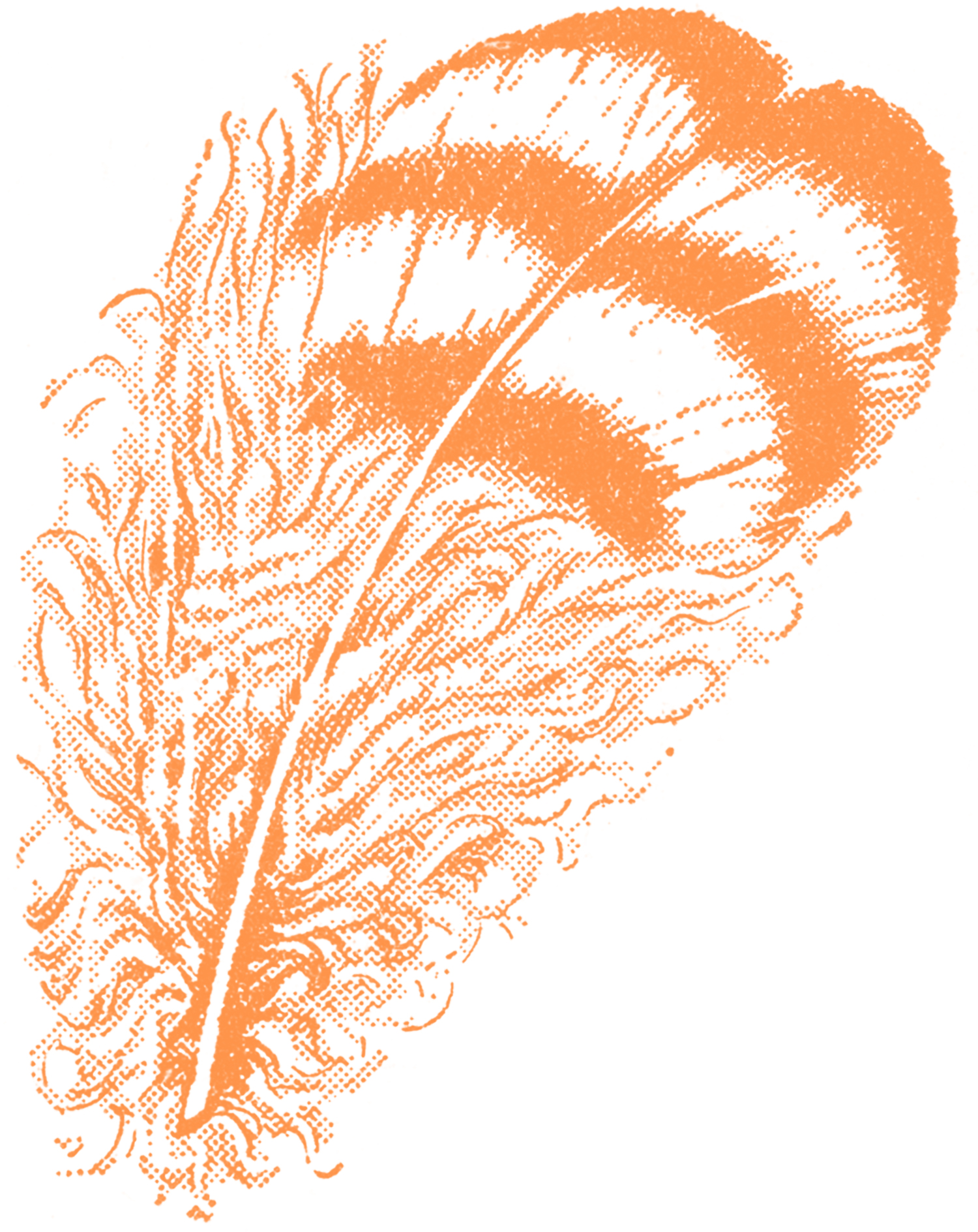 Vintage Feather Clip Art.