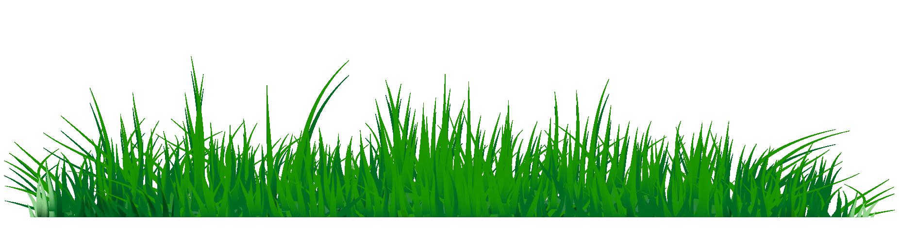 82+ Grass Clipart.