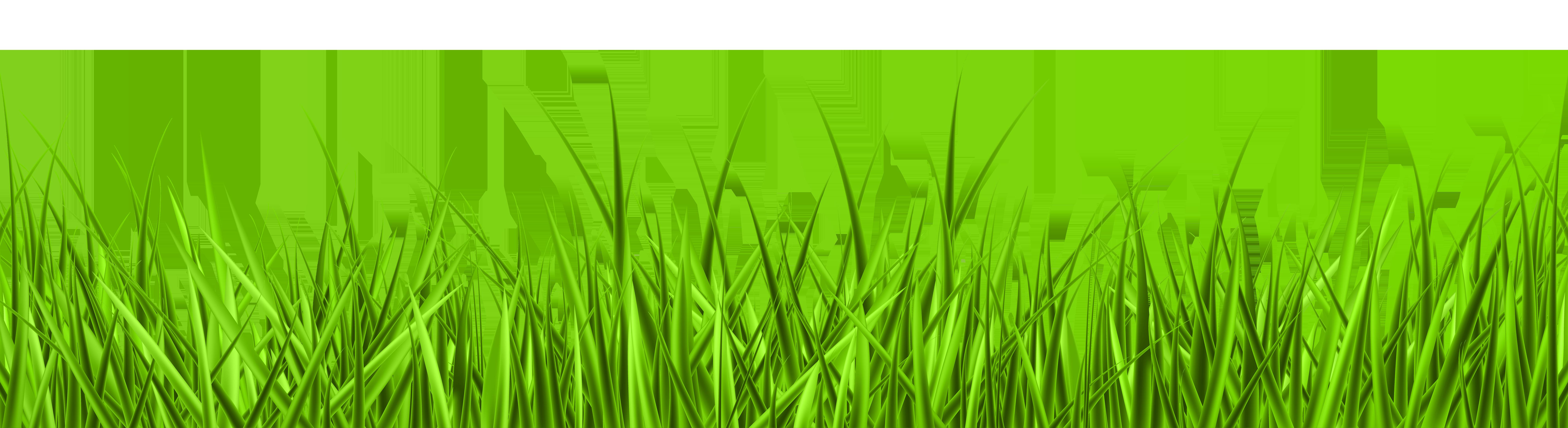 Grass PNG Clip Art Image.