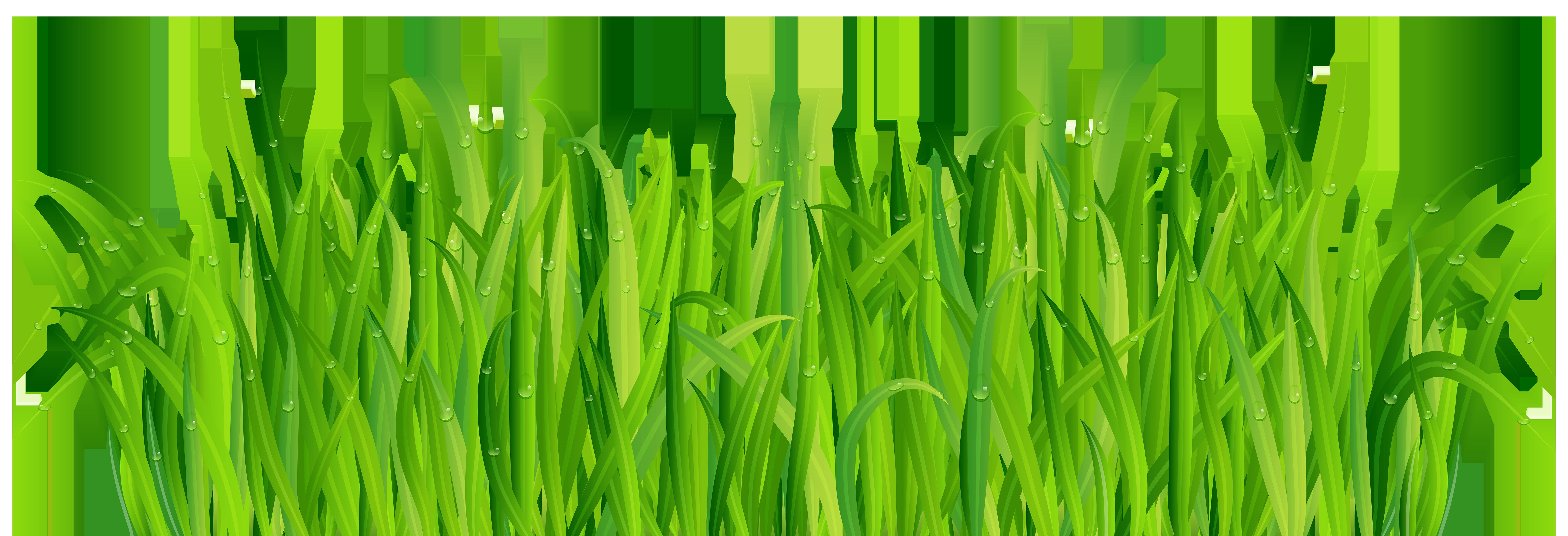 Fresh Green Grass PNG Clip Art Image.