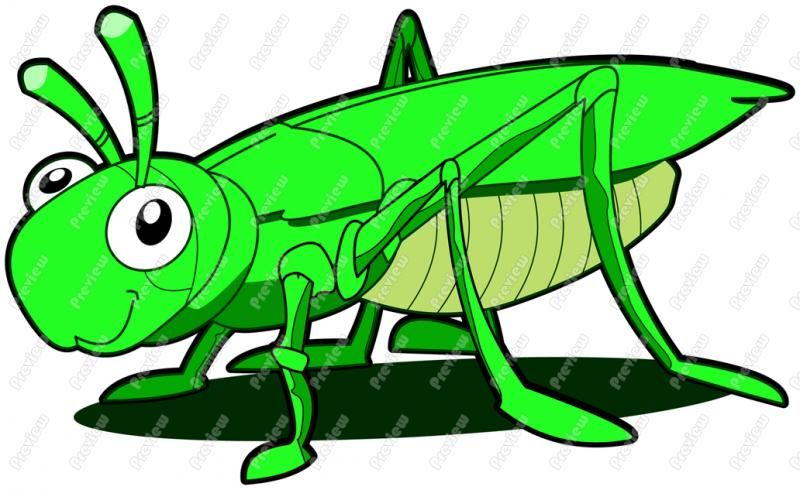 free clip art/grasshoppers.