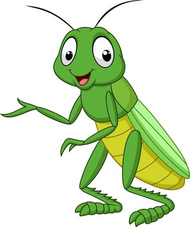3,360 Grasshopper Stock Illustrations, Cliparts And Royalty Free.