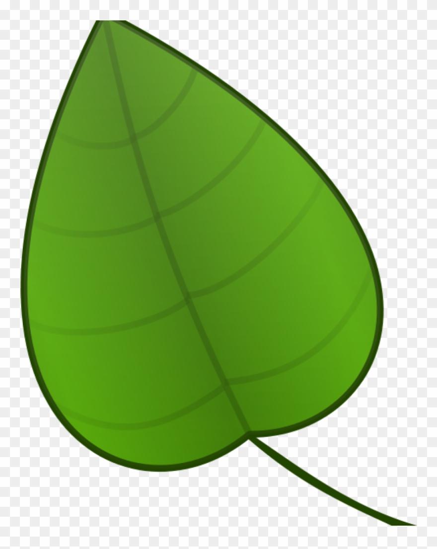 Free Clip Art Green Leaf.