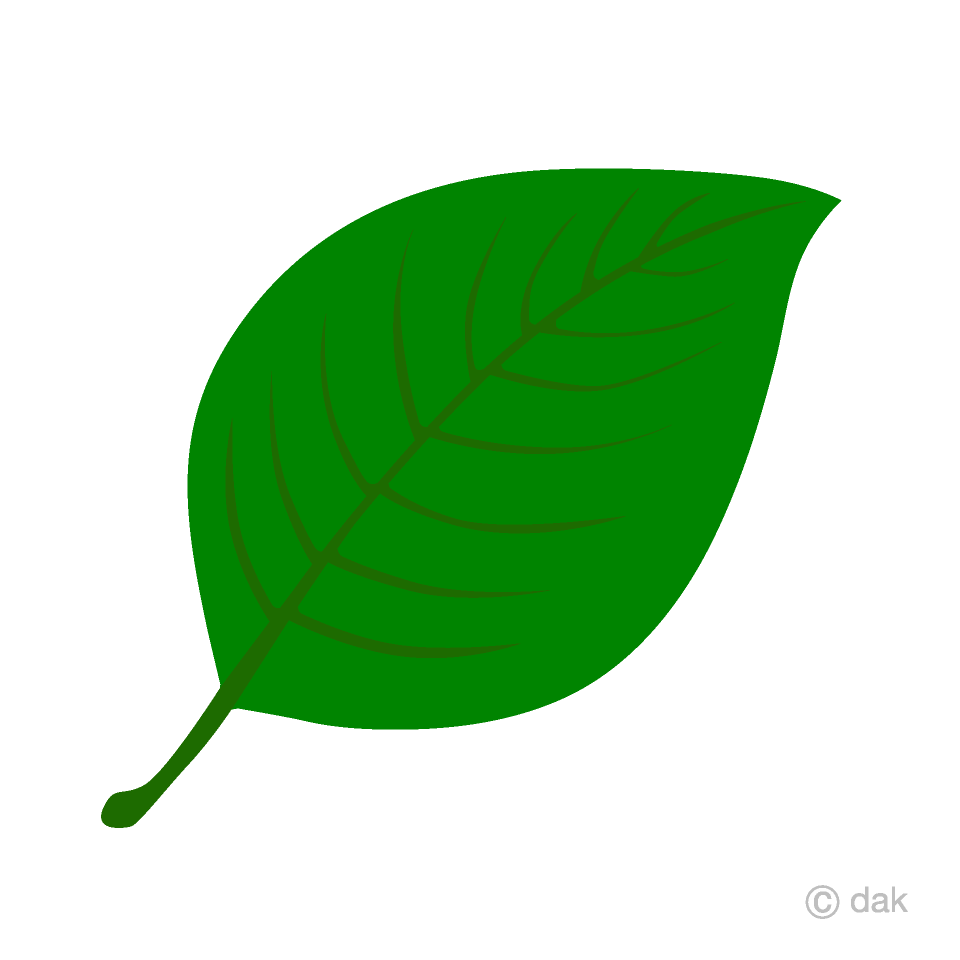 Green Leaf Clipart Free Picture|Illustoon.