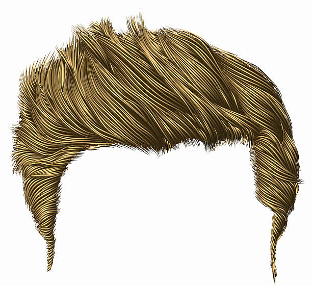 Clipart Hair & Free Clip Art Images #12643.