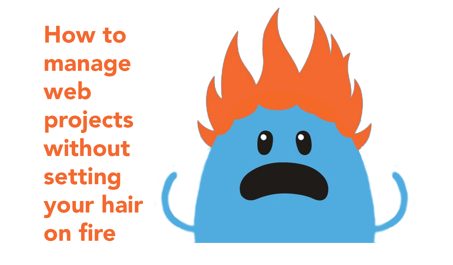 How to manage web projects without setting your hair on fire!.