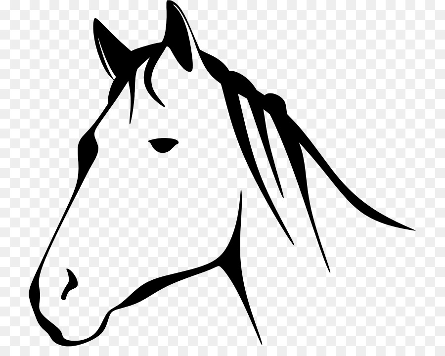 Horse, Illustration, Face, transparent png image & clipart free download.