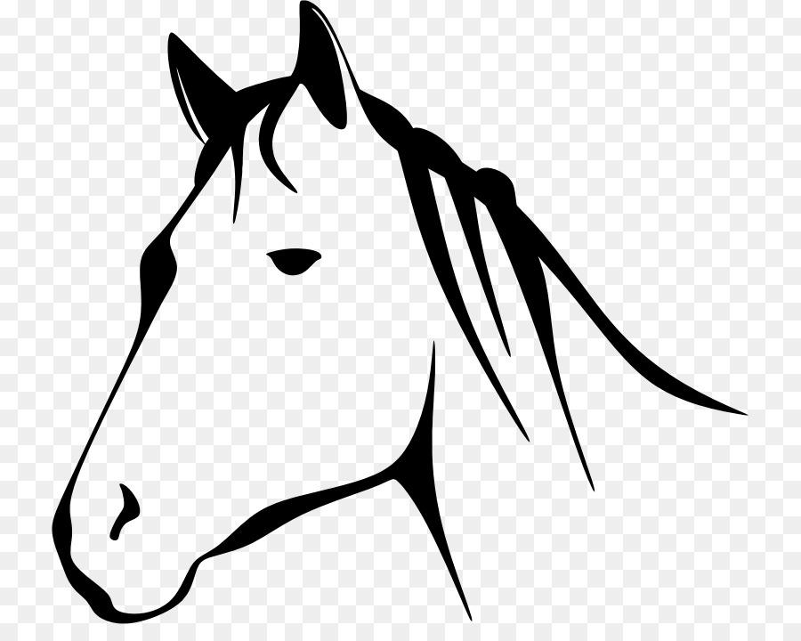 Horse, Illustration, Face, transparent png image & clipart free download.