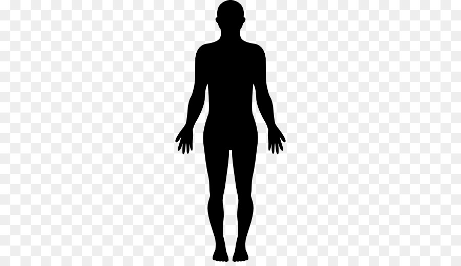 Human Body Homo Sapiens Silhouette Clip Art Png Download Gorgeous.