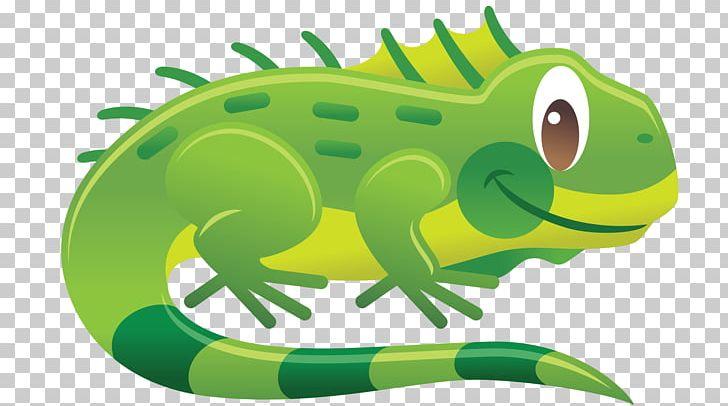 Chameleons Reptile Green Iguana Lizard PNG, Clipart, Amphibian.