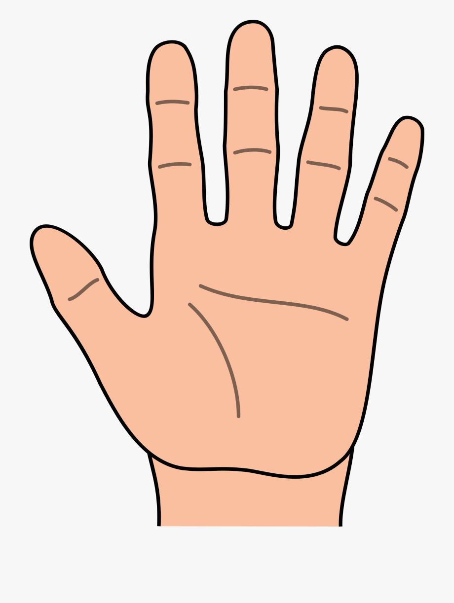 Hands Hand Outline Clipart Kid.