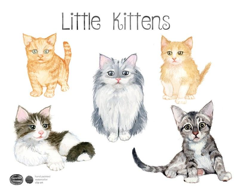 Watercolor Kittens, Kitten Clip Art, Kitten clipart, Cat Clip Art, Cute  Animals, Kitty Clipart, Animal Art.