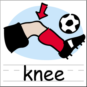 Clip Art: Basic Words: Knee Color Labeled I abcteach.com.