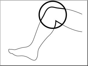 Clip Art: Parts of the Body: Knee B&W Unlabeled I abcteach.com.